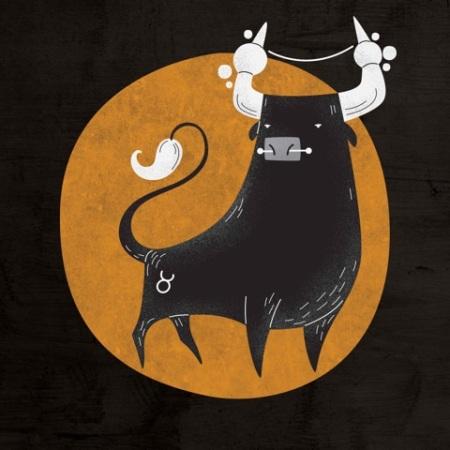 touro (2)